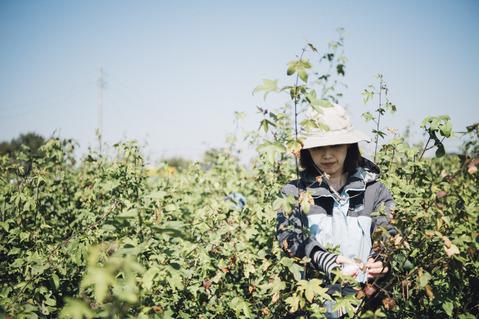 収穫⑤.jpg